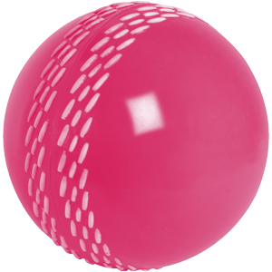 Velocity Ball Pink